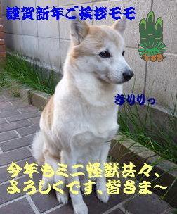 a0154801_924037.jpg