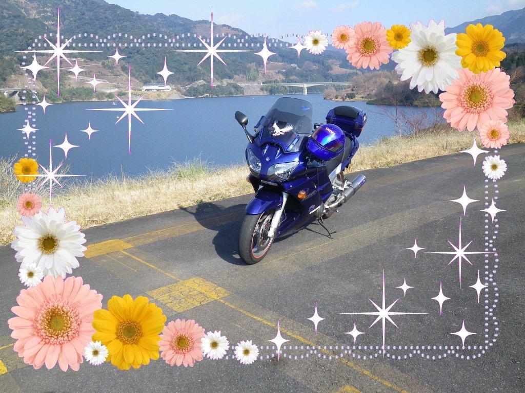 e0069622_139172.jpg
