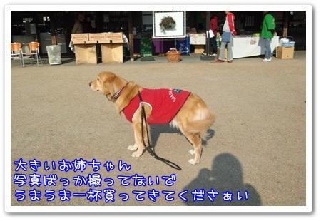 c0107886_2057479.jpg