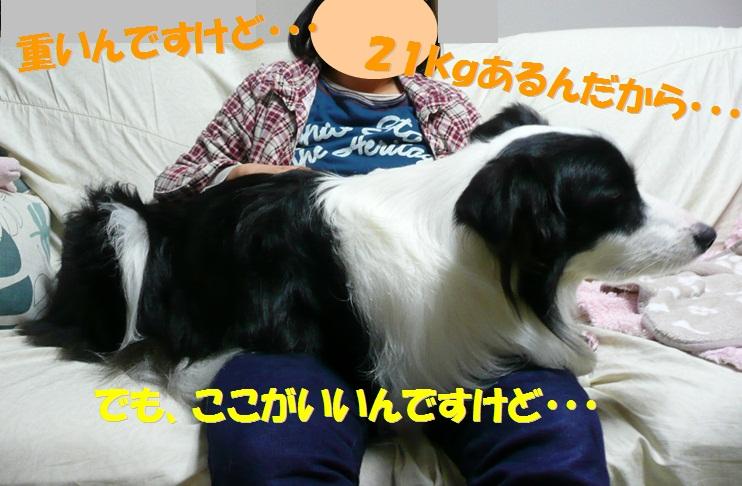 c0147241_1455638.jpg