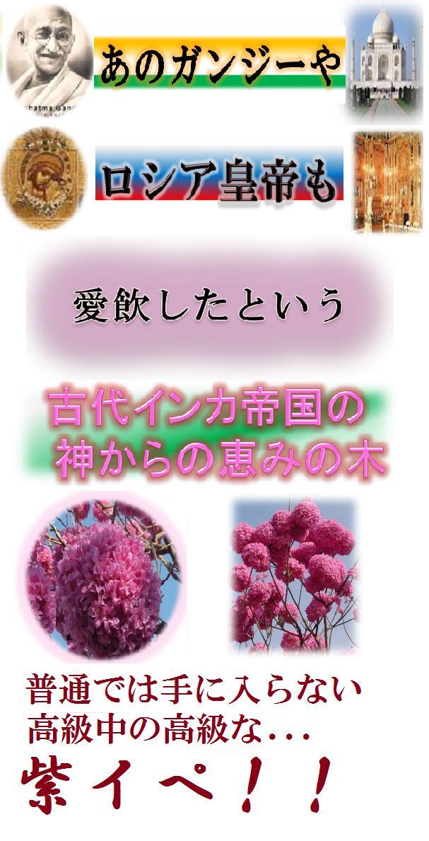 c0011204_17491859.jpg