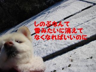 e0121589_13451326.jpg