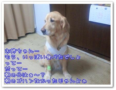 c0107886_0403154.jpg