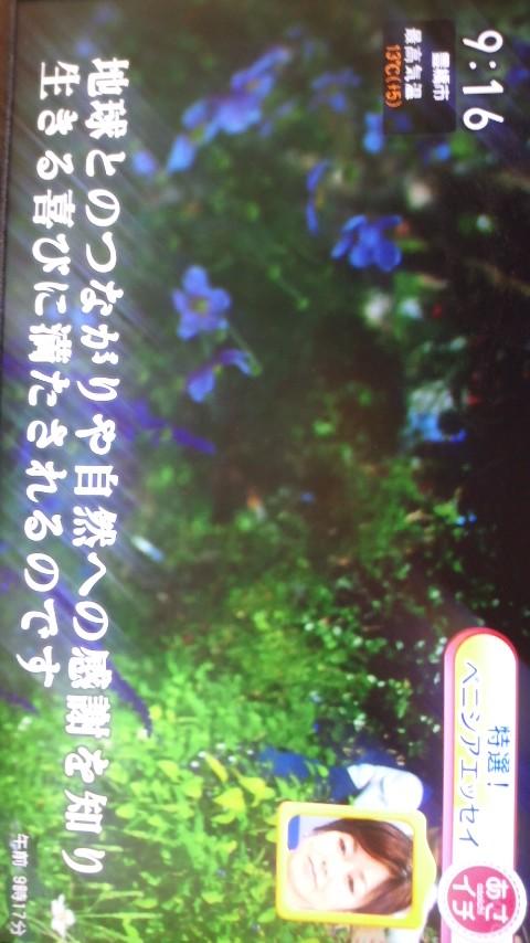 a0255577_11301488.jpg