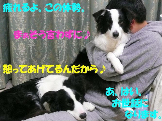 c0147241_1853247.jpg