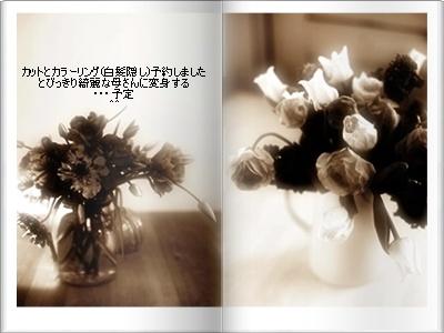 e0136420_7171942.jpg