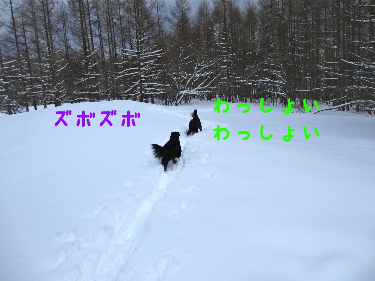 c0237824_22315736.jpg