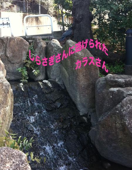 a0109467_146435.jpg