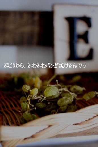 c0162653_15162239.jpg