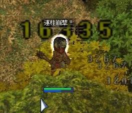 c0010809_3524155.jpg