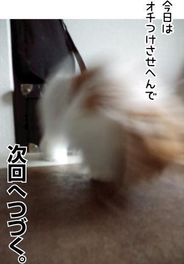 e0242030_1921937.jpg