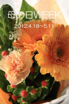 e0153758_195695.jpg