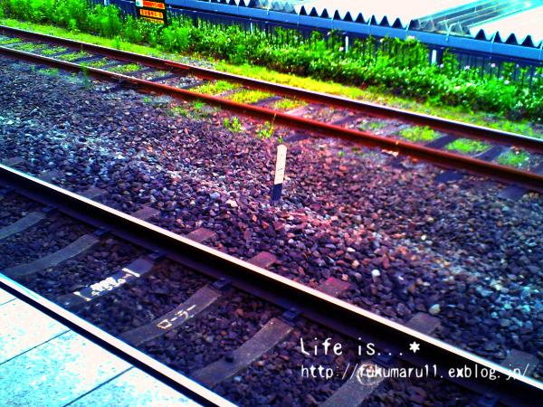 a0279623_1634397.jpg
