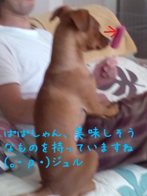 e0246708_22363015.jpg