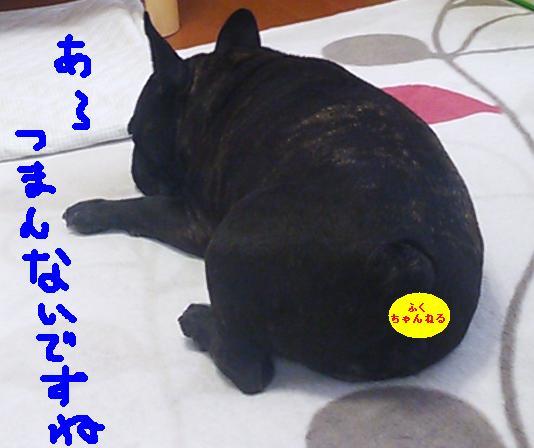 c0113109_0135512.jpg