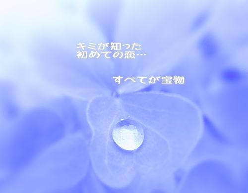 a0104940_319226.jpg