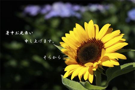 c0213600_9415793.jpg