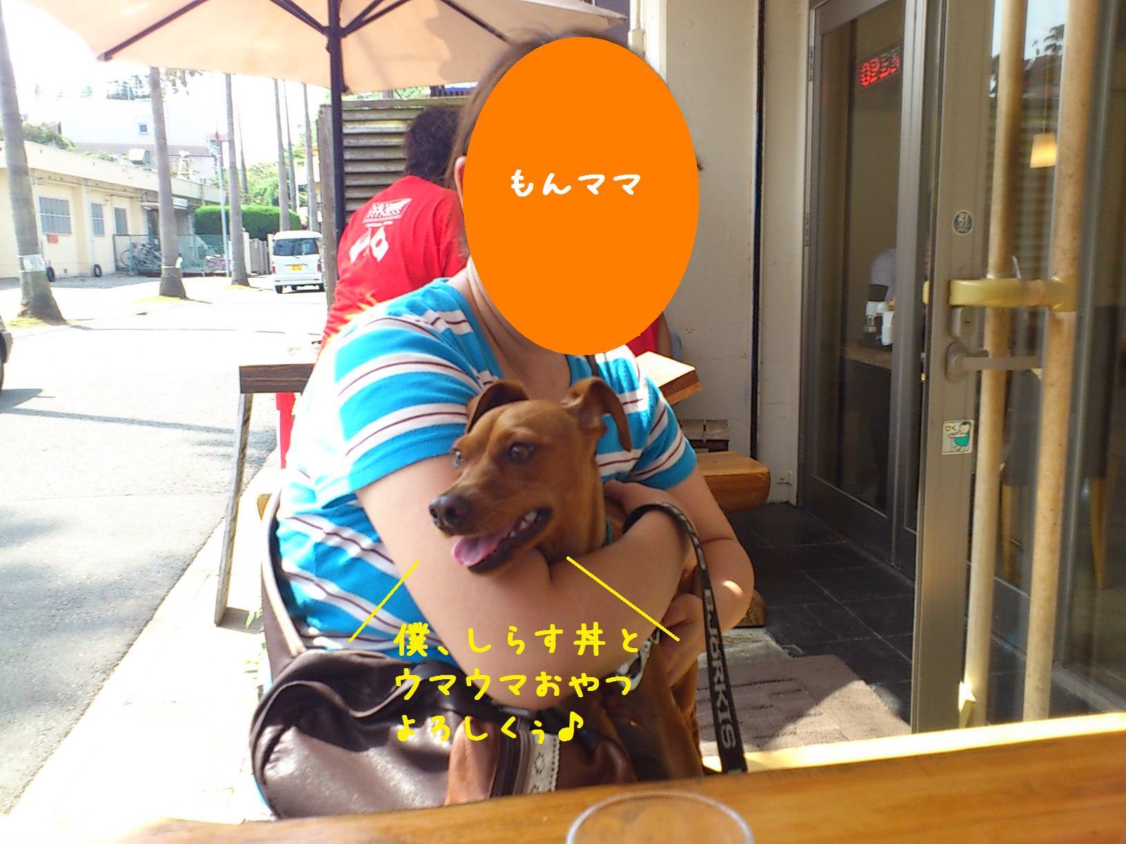 e0246708_2025195.jpg