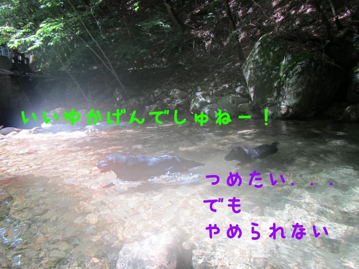 c0237824_1112148.jpg
