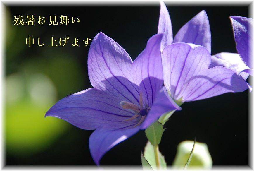 c0187781_2111061.jpg