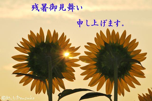 a0276584_1410689.jpg