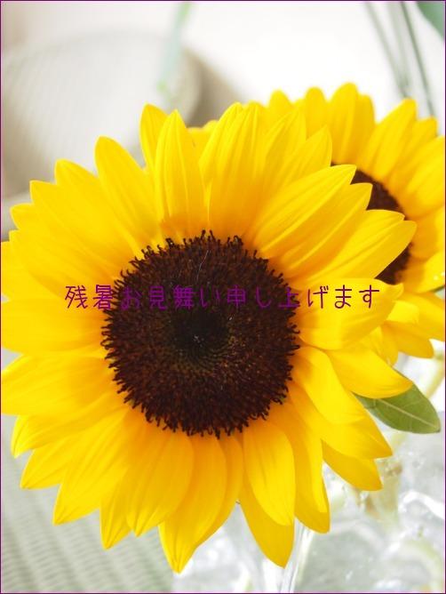 a0196698_19261510.jpg
