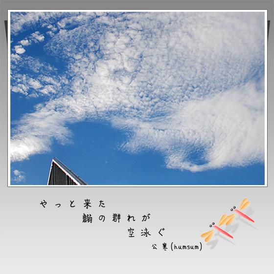 c0009981_6583680.jpg
