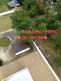 c0195031_17294060.jpg