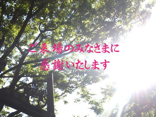 c0084862_1575864.jpg