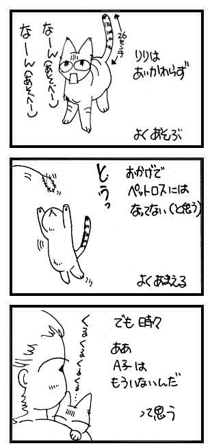 a0038698_20323125.jpg