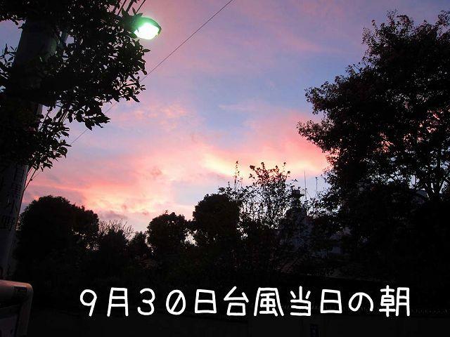 c0062832_715322.jpg