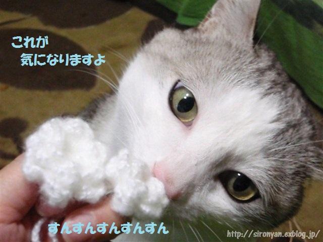 a0159490_1614096.jpg