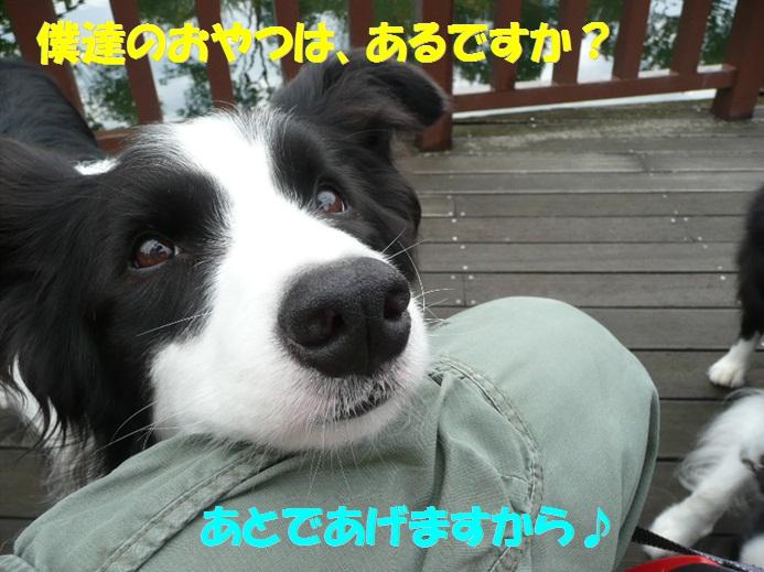 c0147241_1840838.jpg