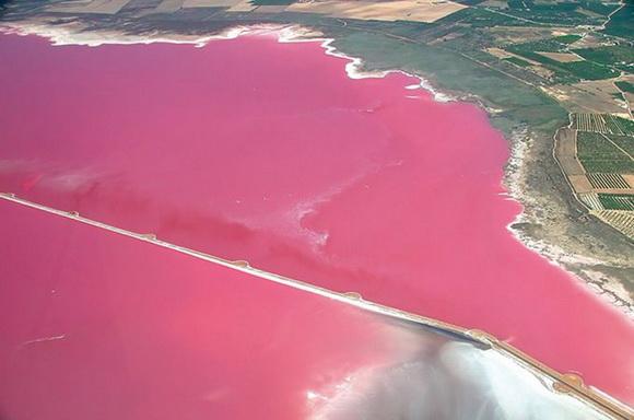 Смотреть Салат розовое море видео