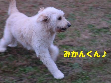 c0254426_22212976.jpg