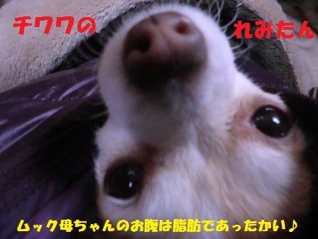c0254426_039622.jpg