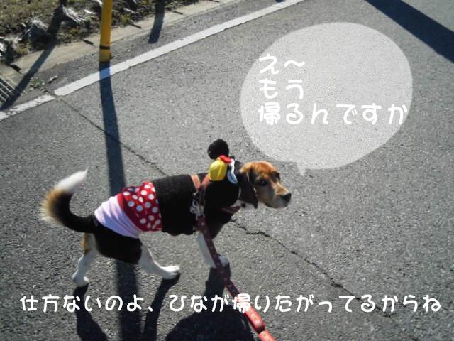 c0166622_17271756.jpg