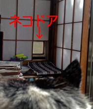 c0211810_7563951.jpg