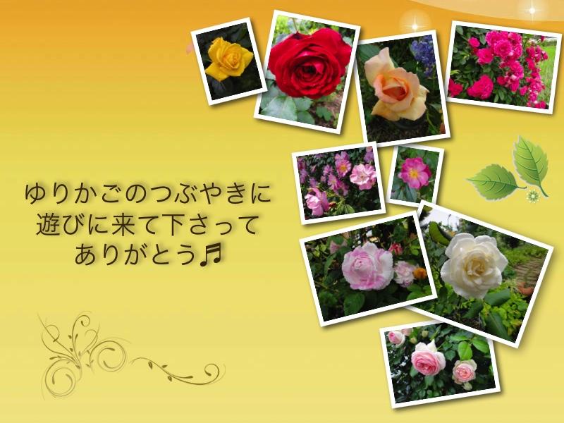 c0105306_14222980.jpg