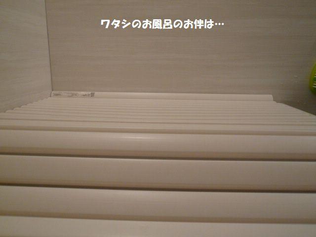e0094407_1855510.jpg