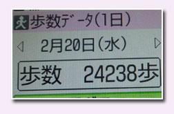 c0051105_17374028.jpg