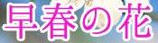c0119160_2224588.jpg
