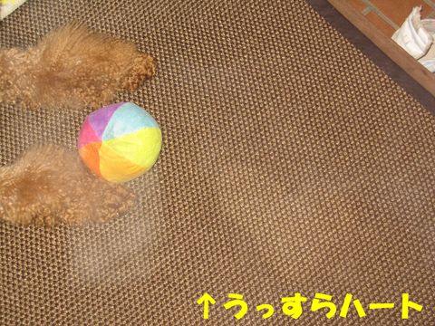 c0283778_16105048.jpg