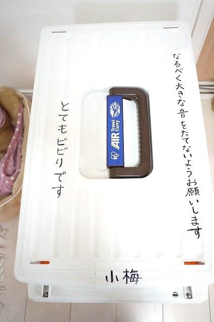 e0241952_1957452.jpg