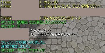 c0112758_1010445.jpg