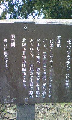 a0005484_20133515.jpg