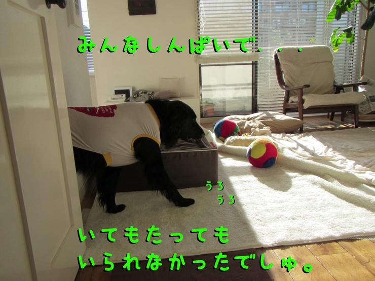 c0237824_9502759.jpg