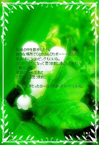 e0136420_1731382.jpg