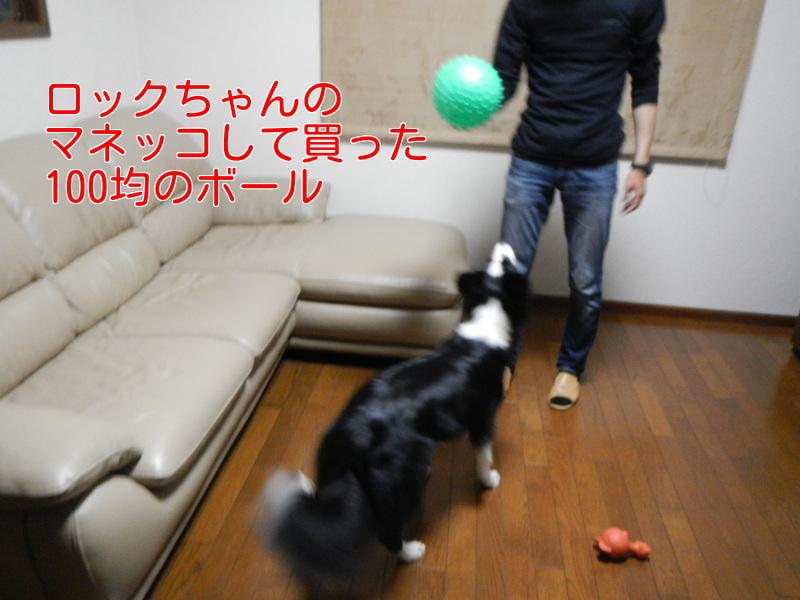 a0232619_2012473.jpg