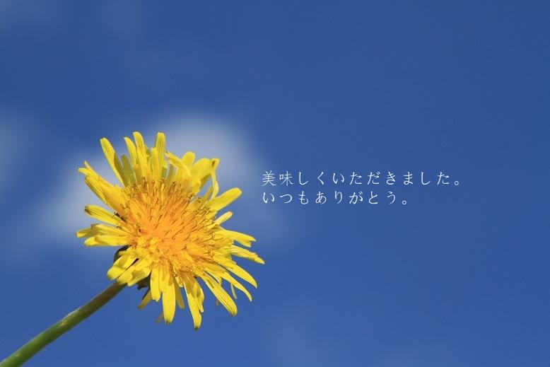 c0145250_145407.jpg